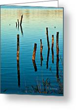 Submerged Trees At Sunset Greeting Card