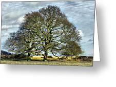Suffolk Winter Landscape Greeting Card
