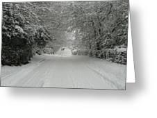 Sugar Road IIi Greeting Card by Rdr Creative