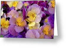 Sugared Pansies Greeting Card
