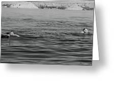 Summer At Lake Mead Greeting Card