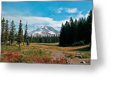 Summer At Mt. Hood In Oregon Greeting Card