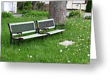 Summer Bench And Dandelions Greeting Card