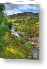 Summer Colour In The Glen Greeting Card by John Kelly