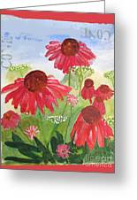 Summer Coneflowers Greeting Card
