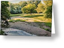 Summer Evening Along The Creek Greeting Card