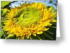 Summer Floral Art Prints Yellow Sunflower Greeting Card