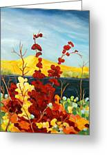 Summer Foliage Greeting Card