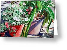 Summer Impatiens Greeting Card by Peter Sit