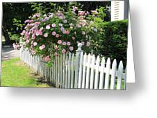 Summer In Maine Greeting Card