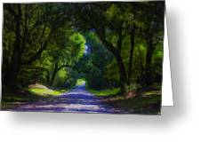 Summer Lane Greeting Card