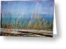 Summer Rendezvous Greeting Card