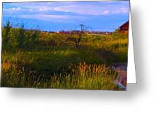 Summer Shot Of Old Shack By Creek, St Greeting Card
