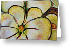 Summer Squash Greeting Card
