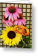 Summer Trio  Greeting Card
