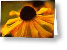 Summers Bloom Greeting Card