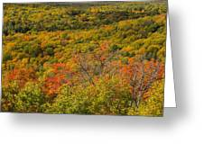 Summit Peak Autumn 6 Greeting Card