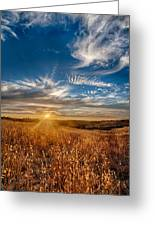 Sun Enchanted Evening I Greeting Card