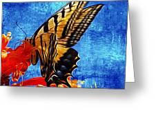 Sun Lit Eastern Tiger Swallowtail Greeting Card