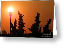 Sun Post Greeting Card by Laurence Oliver