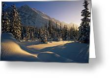 Sun Setting Behind Trees And Mountain Greeting Card