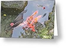 Sun Water Flowers And Fish Greeting Card