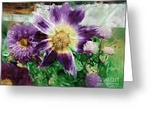 Sunburst In Lavender Greeting Card