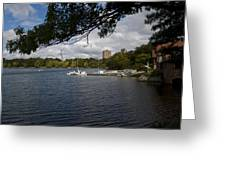 Jamaica Pond Sailing Greeting Card