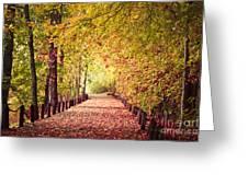 Sunday Stroll Greeting Card