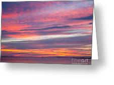Sundown In Dunedin Greeting Card