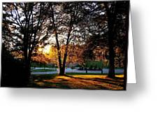 Sundown In Stanley Park Greeting Card