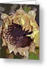 Sunflower 13 Greeting Card
