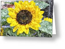 Sunflower 4 Sf4wc Greeting Card