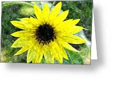 Sunflower 5 Sf5wc Greeting Card