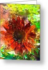 Sunflower 7 Greeting Card