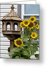 Sunflower Bird Feeder Greeting Card