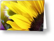 Sunflower Closeup In Landscape Greeting Card
