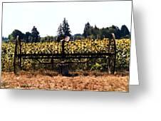 Sunflower Farm Scene Greeting Card