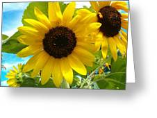 Sunflower Medley Greeting Card