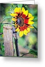 Sunflower On A Stick Greeting Card
