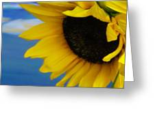Sunflower One Greeting Card