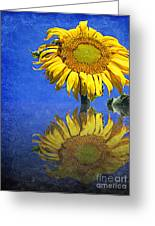 Sunflower Reflection Greeting Card