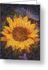 Sunflower Season Greeting Card