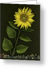 Sunflower With Rocks Greeting Card