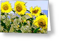 Sunflowers Sunbathing Greeting Card
