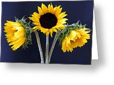 Sunflowers Three Greeting Card