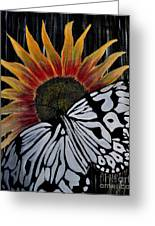 Sunfly Greeting Card
