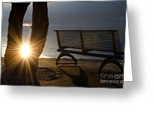Sunlight And Bench Greeting Card