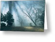Sunlight Pierces The Morning Mist Greeting Card