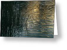 Sunlight Reflects On Rippled Water Greeting Card
